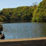 Black Glen pond