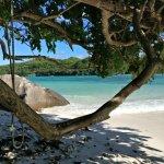 photos de Moyenne Island