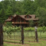 owner's house with vineyard view