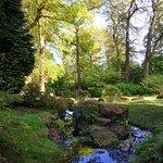 Photo of Batsford Arboretum