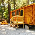We have two new Apprentice Cabins!