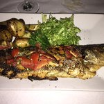 Branzino fish special