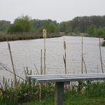 The garden with a part of the lake and canal