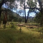 Foto de Pinnacles Campground Inc