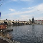 Charles Bridge from the Park