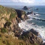Cape Foulwind Walkway Foto