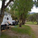lovely grassed sites