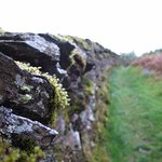 Dry stone walls in the grounds.
