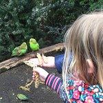 Tierpark Nordhorn Foto