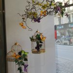 Beautiful butterfly display in Hotel window