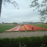 Photo of NH Noordwijk Conference Centre Leeuwenhorst