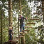 Go Ape Tree Top Adventure at Moors Valley