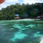 Photo of Langkawi Coral