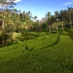 Photo of Mount Kawi