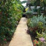 Beautiful walk way to rooms
