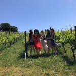 Photo de Beau Wine Tours - Sonoma