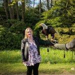 Irina the bald eagle