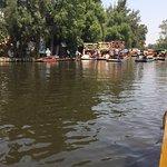 Foto de Floating Gardens of Xochimilco