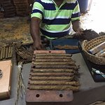 Learning how to roll cigars at the end of the tour.