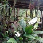 Foto di Princesa de la Luna Eco Lodge