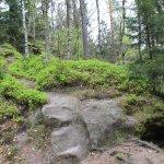 Photo of Czech - Saxon Switzerland