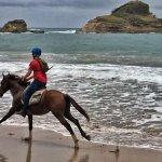 More beach gallops!