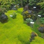 Photo of Oregon Garden Resort