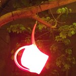 beer garden: watering cans used as lamps