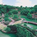 Photo of Japanese Tea Gardens