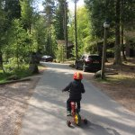 Foto de Center Parcs Whinfell Forest