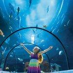 Photo de Aquarium du Quebec