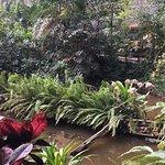 Photo de Tropical Islands