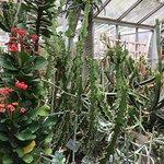 Photo de Highland Botanical Park and Lamberton Conservatory