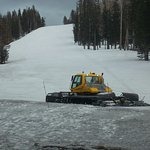 Arizona Snowbowl, Flagstaff AZ. Trimming the slopes.