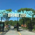 Photo de Bronx Zoo
