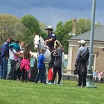 Highland Park - mounted police on display