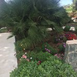 Photo of Villa Morgana Resort & Spa