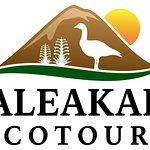 Haleakala Bike Co. dba Haleakala EcoTours