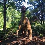 Foto de Huntsville Botanical Garden