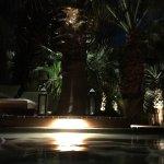 Foto de Two Bunch Palms