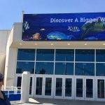 Foto de Texas State Aquarium