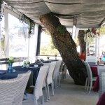 Zdjęcie Beach Bar Tamaris