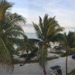 Foto de Oasis del Caribe