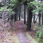 Nice path to follow