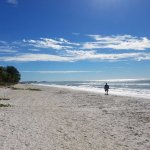 beach on Sanibel