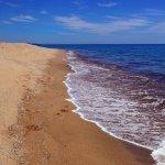 Photo de Spiaggia di Su Barone