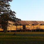 Photo of Nkambeni Safari Camp