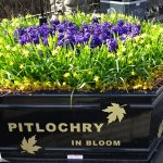 Photo de The Pitlochry Hydro Hotel