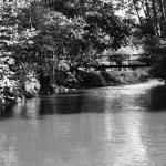 The Aisne river near Bomal