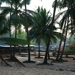 Photo of Varca Palms Beach Resort